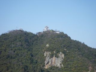 【初めての山歩き】金華山トレッキング山頂往復コース