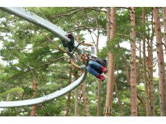ロールグライダー 森の中を鳥のように駆け抜ける爽快な冒険!