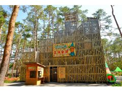 ボックルの森立体迷路 5階建ての高さの大きな迷路で知力と体力、運だめしをしながらゴールを目指せ!