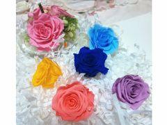 体験当日にお好きな色をお選びいただけます!