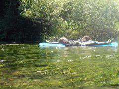 マット型の浮き輪に寝転がって、きれいな川をとてもゆっくり流れていきます