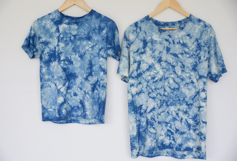 藍色のふるさと上板町で藍染体験Tシャツ(大人用)&新鮮な藍の生葉を使った生葉染め...