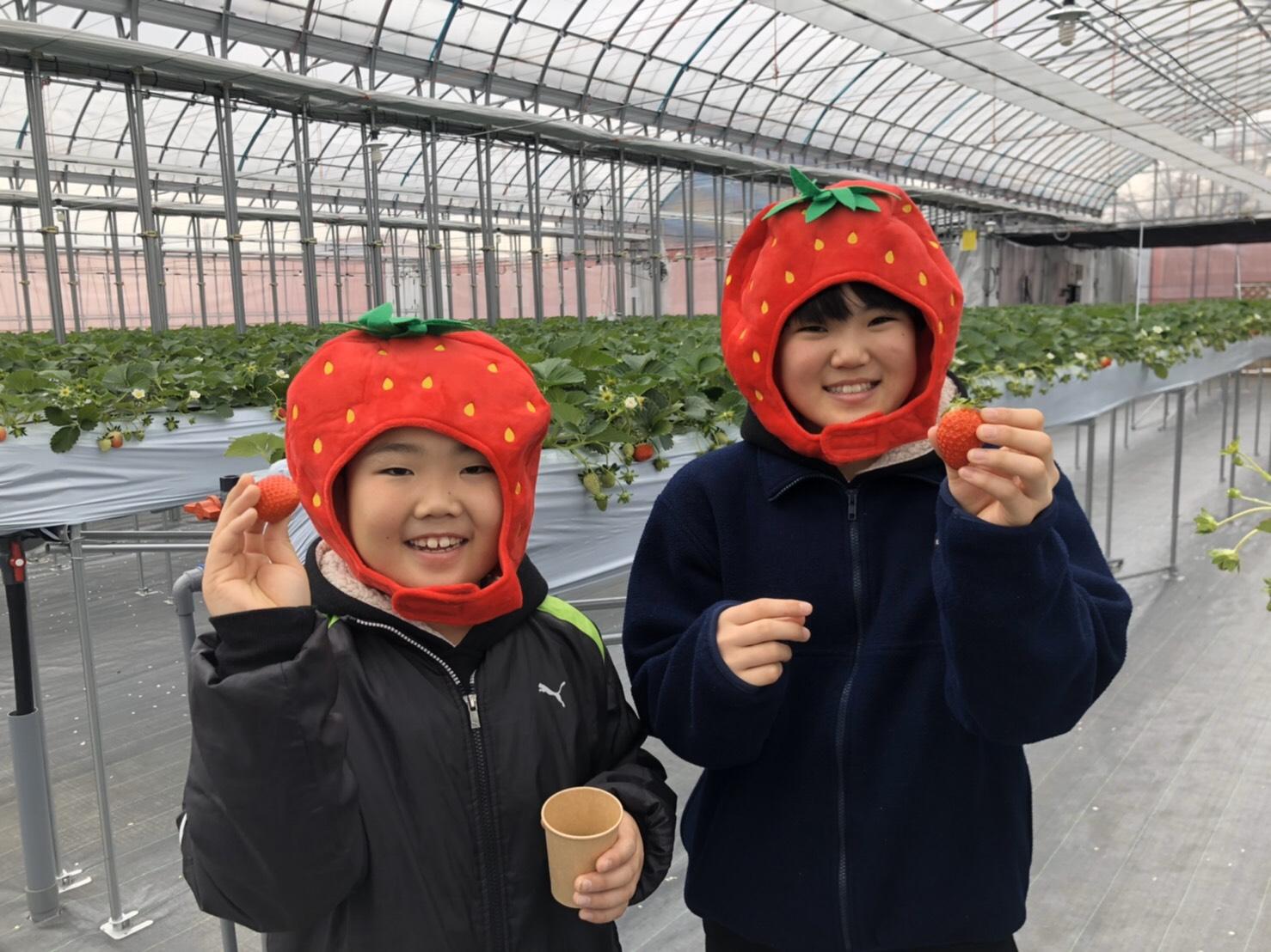 2020年2月~の新しい農園です!美味しく楽しい時間をお過ごしください♪