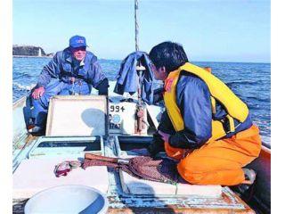 定置網漁体験!鱧、足赤えび天ぷらランチ付き♪♪