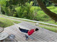 ウッドデッキにハンモックを設置してみました。ブルーベリー狩り後も、広い園内でゆったりとお過ごしください。