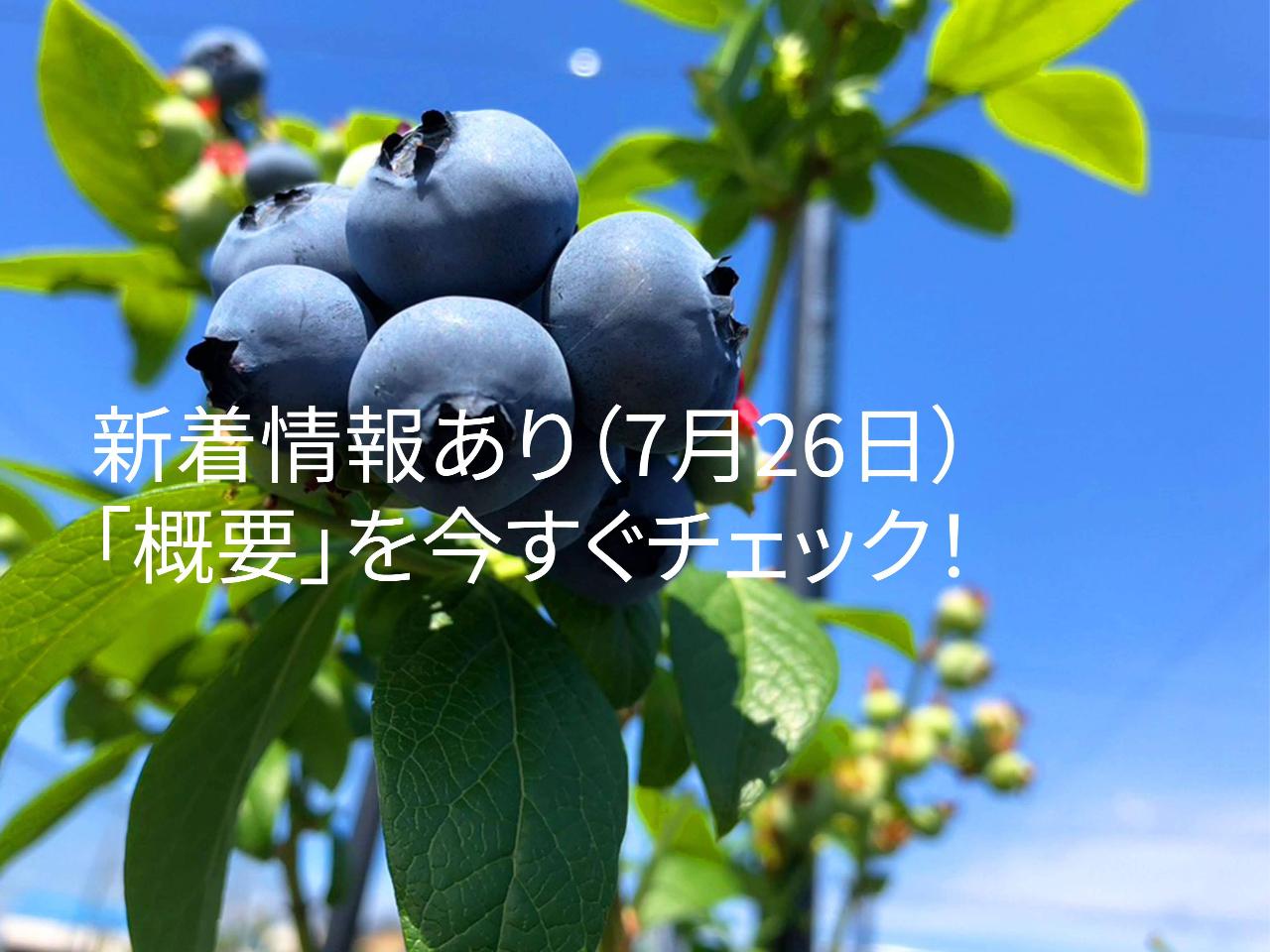 2022年開催予定!!!《徳島県×阿波市》噂の「アンブレラスカイ」がお出迎え!!...