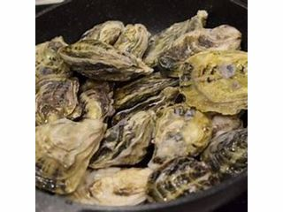 <冬季限定>焼き牡蠣食べ放題&牡蠣鍋セット(飲み放題付き)