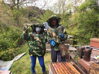 養蜂農家の体験             頭から網の防護服を着て見学します。