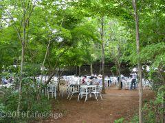 メロンの森 試食、バーベキュー 森林浴会場