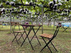 テーブルとイスも他のお客様と十分な間隔を空けております