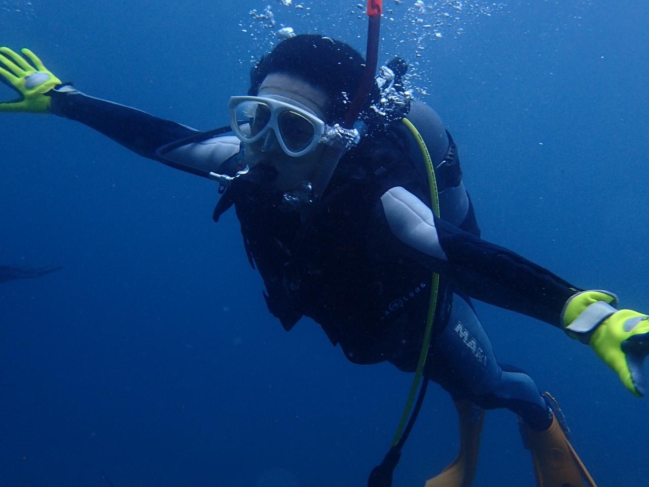 《CMASライセンス取得コース》2日間でCカードを取得して海の世界をより深く知っ...