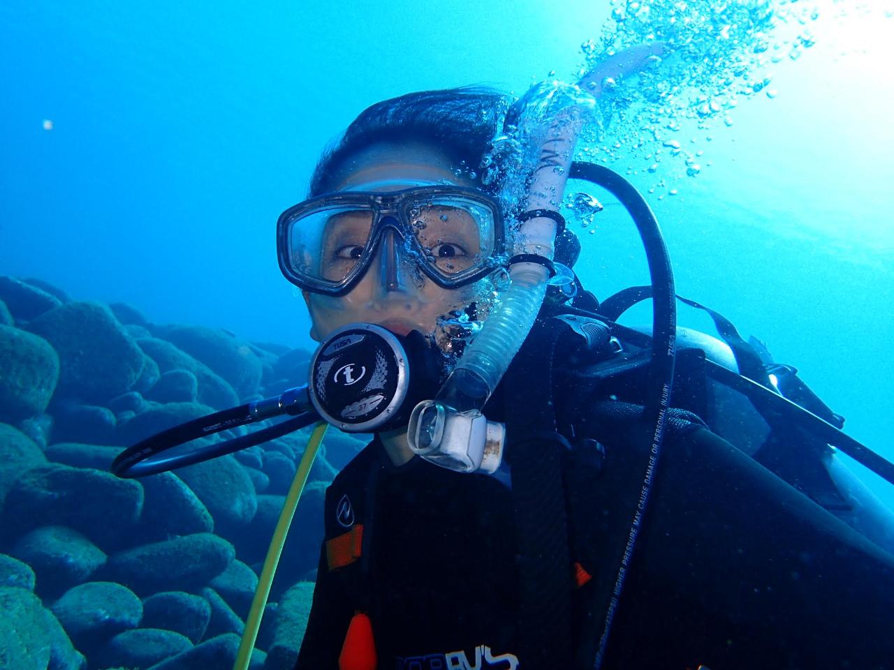 【初めての方大歓迎☆体験ダイビング】◆\安全第一で1ダイブ/海のきれいな伊豆で潜...