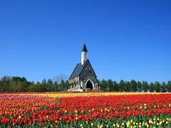 春には色とりどりのチューリップが咲き誇ります♪シンボルの教会でハイ、チーズ☆