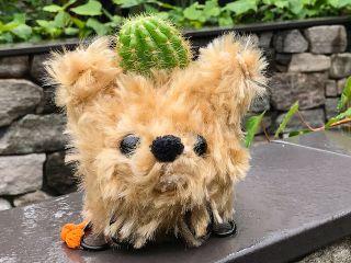 アタマの植物を育てるカラフル苔玉『モスペット』を作る体験です!犬・猫はもちろん、お好きな動物をお作りいただけます。
