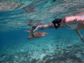 宮古島巡りフリープラン半日 絶景ポイント&シュノーケル 写真データ無料 1組貸切ツアーです。