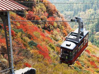 妙見展望台から見える紅葉
