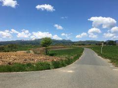 まるで北海道!酪農地帯とその向こうに連なる山々が最高です^^