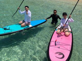 奄美ブルーの海を満喫!ボートシュノーケル&SUP体験、船でしか行けない秘境にあるコウトリビーチ上陸ツアー