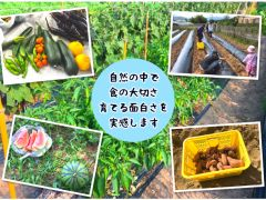 糸島で収穫体験を行っています♪